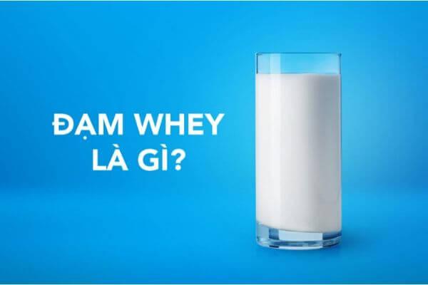 đạm whey là gì, sữa đạm whey cho bé