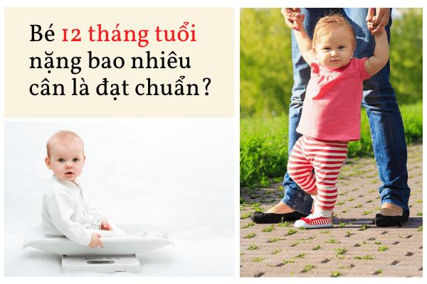 Bé 12 tháng tuổi biếng an, Bé 12 tháng tuổi an cơm được chưa, Trẻ 12 tháng uống bao nhiêu sữa, Trẻ 1 tuổi ăn bao nhiêu ml cháo